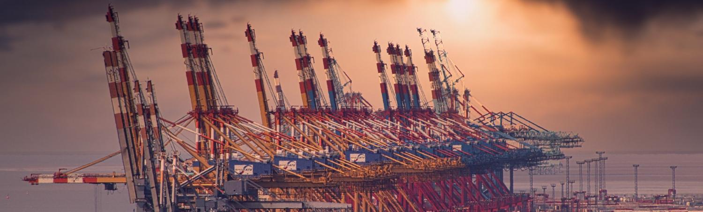 Les grands ports maritimes face au futur