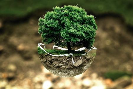 Notre charte environnement